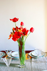 Flowers on my table (Alice Poulain.) Tags: flowers windows light red summer sun love primavera dinner casa finestra vase fiori rosso cena luce vaso pasqua parfum profumo stelo polline orande pistilli