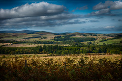 283/366 The View from Thrunton Woods, Northumberland (Mark Seton) Tags: england landscape photo rocks view north northumberland photograph dailyphoto hdr pictureaday thruntonwoods dailyphotograph project365283 project365091012