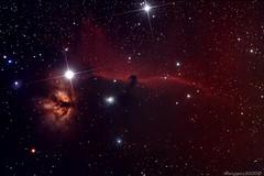 Horsehead nebula - quick elaboration (marcopics3000) Tags: nebula astrophotography orion ic434 horsehead horseheadnebula Astrometrydotnet:status=solved Astrometrydotnet:version=14400 Astrometrydotnet:id=alpha20121004535924