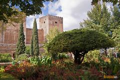 Alhambra (Antonio Exposito) Tags: espaa luz sol atardecer agua mediterraneo sony paisaje andalucia alhambra granada alpha mundo alcazaba albayzin