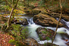 Vibrant valley (snowyturner) Tags: longexposure autumn fall water leaves river rocks foliage devon valley dartmoor ivybridge erme
