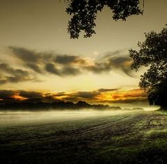 At sunrise (Eric Goncalves) Tags: morning light nature sunrise gloucestershire array thegalaxy ericgoncalves blinkagain rememberthatmomentlevel1 flickrsfinestimages1 flickrsfinestimages2 rememberthatmomentlevel2 rememberthatmomentlevel3