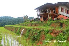 PhamonVillage-DoiInthanon-ChiangMai-Trip_By-P r i m t a a_E10886166-024