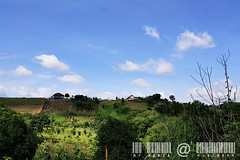 KhaoYai view by มาเรีย ณ ไกลบ้าน_G7202358-035