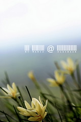 KhaoYai view by มาเรีย ณ ไกลบ้าน_G7202358-028