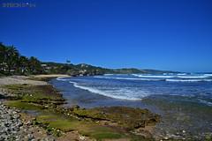 Bathsheba Beach (Sharon Emma Photography) Tags: sea holiday beach water saint st soup nikon rocks crystal tide stjoseph bowl clear pools barbados caribbean bathsheba soupbowl saintjoseph 2012 joesph d3100
