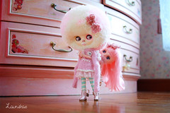 will you pls get off? (launshae) Tags: pink valentine polly blythe francoise ananassa middie launshae