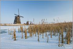 Kinderdijk this week! (Wim Boon Fotografie) Tags: winter snow nature netherlands windmill sneeuw nederland natuur 7d kinderdijk alblasserwaard molen molentocht koud canon1740f4l alblasserdam winterlicht wimzilver seaghullhoekzoeker molentocht2013 sneeuwinkinderdijk schaatseninkinderdijk
