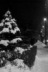 Winter night in black&white... (green_lover) Tags: street winter bw snow lamp night dark town vanishingpoint blackwhite poland hero winner yrardw