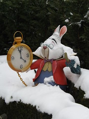 I'm Late for a Very Important Date (CoasterMadMatt) Tags: park winter white snow paris france rabbit weather season wonder french photography  photographie photos snowy euro alice disneyland hiver january disney resort photographs theme neige curious blanche temps janvier parc labyrinth franais alices park fantasyland aliceinwonderland whiterabbit disneylandparis saison disneylandresortparis parc thme 2013 alicescuriouslabyrinth theme paris euro disney coastermadmatt disneyland thme
