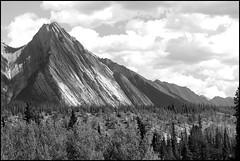 The Kootenay  Reserve (greenthumb_38) Tags: canada reunion rockies canadian alberta 2012 canadianrockies jeffreybass august2012 moseankoreunion
