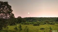 Under the Moonlight (Ld\/) Tags: moon summer light brackvenn brackven eupen eifel waimes nature fagnes hohes venn belgique belgium belgie ardennen ardennes ardenne venen hoge hges