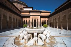 Courtyard of the Lions - III (RaminN) Tags: spain palace alhambra granada patiodelosleones nasriddynasty