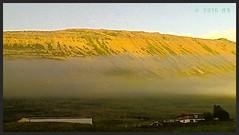 Þokuslikja (arnthorr) Tags: arnthorr ar arnþórragnarsson arnþór fljótinn skagafjörður norðurland northiceland iceland frí fjölskyldan