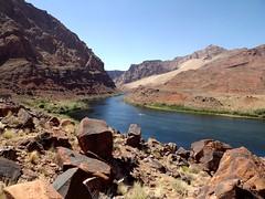Colorado River (h willome) Tags: 2016 arizona desert river coloradoriver leesferry glencanyonnationalrecreationarea