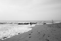 Alone (BALAJI SEETHARAMAN) Tags: chennai chennaiweekendclickers cwc540 kovalam beach people blackandwhite monochrome nammachennai canon600d 1855mm beacheslandscape