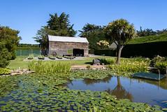 No Wind Today (Jocey K) Tags: newzealand bankspeninsula southisland motukarara irisgarden iris pond lilypond reflections shed barn building trees clouds sky