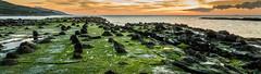 Guadalmes-km90 (J13Bez) Tags: 1020mm agua amanecer costa d3200 estrecho guadalmesi mar rocas coast beach rock sunrise sun sol verde green marea