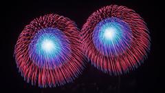 twins (peaceful-jp-scenery) Tags: fireworks display summer festival yamagata akagawa tsuruoka        sony 7r a7r ilce7r amount sal1635z variosonnart1635mmf28zassm carlzeiss laea4