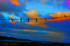 Waiting for wash day. (Camerai) Tags: fogoisland newfoundland clothes clothespins sky clouds