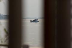 NKRS5551 (pristan25maj) Tags: green pristan pristan25maj brodovi boats reka river dunav danube photonemanjaknezevic nkrs