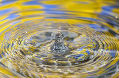 Venus Rising (nicklucas2) Tags: waterdrop colour water flash drip anthropomorphism