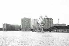 Cranes & Merihaka (Jori Samonen) Tags: cranes coal pile merihaka buildings trees waterfront water sea helsinki finland nikon d3200 350 mm f18 nikond3200 350mmf18 nikond3200350mmf18