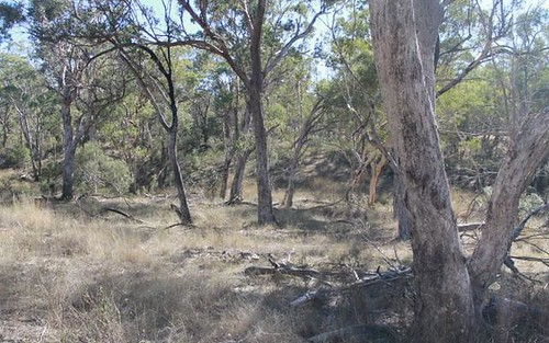 Lot 29 Gulf Road, Emmaville NSW