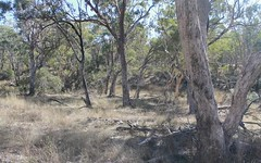Lot 29 Gulf Road, Emmaville NSW