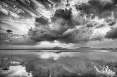 Clouds suit my mood just fine... (Well-Bred Kannan (WBK Photography)) Tags: wbkphotography wbk wellbred kannanmuthuraman kannan nikon nikond750 d750 india indian weekendwalk blackandwhite bw blackwhite monotone mono monochrome msb madrasshutterbugs clouds sky serene kolavai lake water sunrise