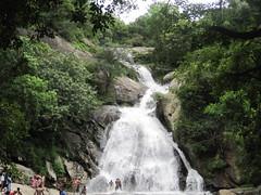 Monkey falls (Siva301in) Tags: india canon waterfalls tamilnadu coimbatore sivakumar monkeyfalls ixus95is canonixus95is ixus95 siva301in bsivakumar sivakumarbalasubramanian