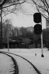 what if (Konstantin Leonov) Tags: park snow digital dark russia railway crop digitalbw ufraw freephoto nikkor50mmf18daf nocopyright freeimage darktheme cc0 d5100 noattributionrequired