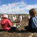 """Falklands' Kids & Gentoo Penguins • <a style=""""font-size:0.8em;"""" href=""""http://www.flickr.com/photos/88714479@N07/8093291559/"""" target=""""_blank"""">View on Flickr</a>"""