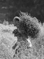 Une place au soleil ★+O (Titole) Tags: worker field bouquet chardons thistles blackandwhite bw bunch harvest thechallengefactory favescontestwinner nicolefaton thumbwrestler friendlychallenges titole storybookbtd2nd supercontest scattirubati herowinner challengegamewinner cywinner 15challengeswinner gamex3