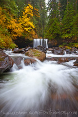 Upper Butte Creek Falls (Darren White Photography) Tags: travel autumn nature rain vancouver oregon canon portland seasons fallcolor northwest fallcolors scenic hike waterfalls pacificnorthwest 1740l outdoorphotography darrenwhite buttecreekfalls northwestlandscapes darrenwhitephotography 5dmkii outdoorphotographers landscapesofthenorthwest