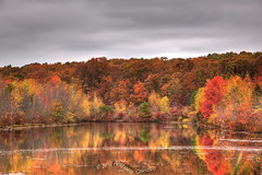 """Manasquan Reservoir (Anthony """"Tony G"""" Gliozzo (Web Site is ocbirds.com)) Tags: fall october autumncolors foliage manasquanreservoir canon24105 canon5dmarkiii flickrstruereflection1 flickrstruereflectionlevel1 anthonygliozzo"""