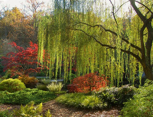 Another Autumn Image from Gibbs Gardens, Ball Ground, Georgia - a ...