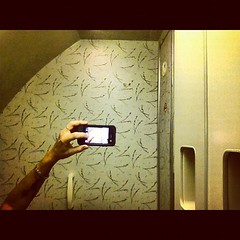 UAL (smalldogs) Tags: travel selfportrait ofme shy byme iphone airplanebathroom