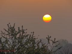 Roisel somme Picardie ( photopade (Nikonist)) Tags: sunset france soleil couleurs couchant brume picardie lightroom disque coth roisel rememberthatmomentlevel1 nikoncoolpixp510 rememberthatmomentlevel2 bestevergoldenartists vigilantphotographersunite vpu2 vpu3