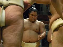 R0035559 (kajikaz) Tags: hiroshima sumo