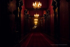 Haunted Mansion Endless Hallway (Todd Hurley Photography) Tags: world house orlando florida spirit ghost disney haunted hallway spooky wdw themepark hauntedmansion candelabra endless darkride imagineering canon5dmark3