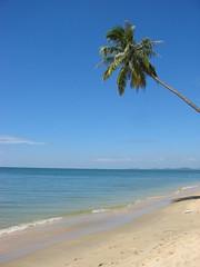 Ph Quc, Vietnam (mbphillips) Tags: phuquoc fareast southeastasia vietnam    asia     mbphillips canonixus400