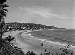 laguna beach (~Staci Lee~) Tags: california blackandwhite film beach mediumformat fuji laguna mamiya645 acros 100iso