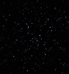 2012.01.07_M41 in CMa (DKordella) Tags: Astrometrydotnet:status=solved Astrometrydotnet:version=14400 Astrometrydotnet:id=alpha20130116346102