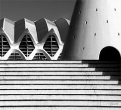 the shape of the spoon (gicol) Tags: las scale valencia architecture modern stairs de spain space ciudad calatrava shape artes spagna forma edifici spazio builfing