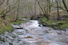 Gelt Woods (Andi1275) Tags: water cumbria flowingwater geltwoods uploaded:by=flickrmobile flickriosapp:filter=nofilter