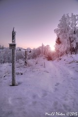 Purple Sky (CJsarp) Tags: winter sunset norway norge vinter hilton norwegen akershus solnedgang noreg ullensaker klfta vreromerike rememberthatmomentlevel1 rememberthatmomentlevel2 rememberthatmomentlevel3 hiltonskogen vintersolnedgang