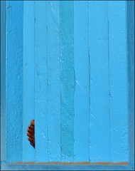 sleep? (Aravindan Rajaram) Tags: blue abstract window sleep leg obscure lpobscure