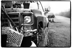 Old Chevy at Finn Slough (Eric Flexyourhead) Tags: old bw canada chevrolet fog truck blackwhite bc britishcolumbia decay foggy rusty richmond chevy american decaying rundown finnslough dykeroad grainyfilm artfilter panaleica25mmf14 leicadgsummilux25mmf14asph olympusem5