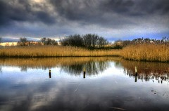 Leasowe shore mere (Tony Shertila) Tags: england sky reflection tree weather clouds europe day cloudy britain reads shore hdr morton alder wirral merseyside leasowe